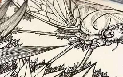 Giant cicada anyone? #ijustwanttodrawprettypictures #365accordionproject