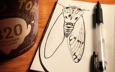 Drawing a cicada and eating ice cream