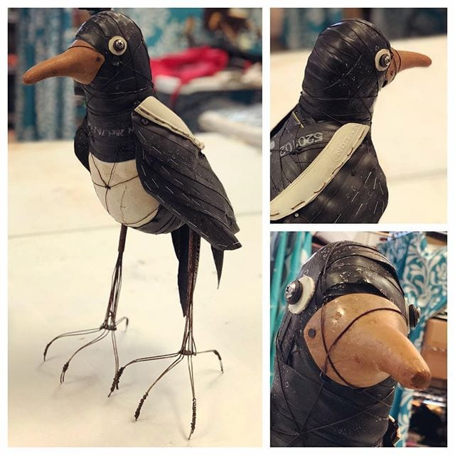 This guy started out as a magpie…