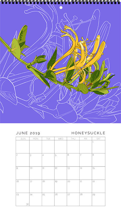 June - Honeysuckle