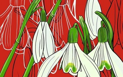 I had a choice for January's birth flower: carnation or snowdrop