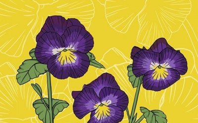 Violets won the vote for February's birth month flower