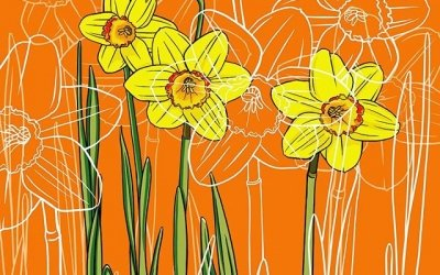 Birth month flower for March: daffodils
