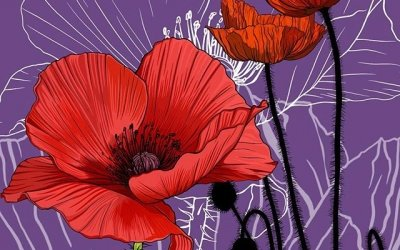 Poppies won by a landslide