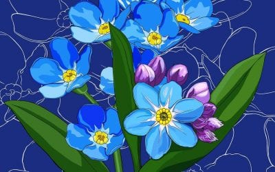 Alaska's flower, the forget-me-not