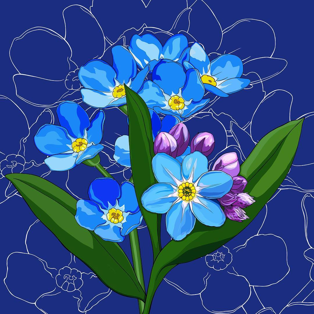 Back to alphabetical order (for now, at least) with Alaska's flower, the forget-me-not. My dragonfly (the four spotted chaser) isn't quite done yet, so you'll just have to wait patiently. I know you are all on the edge of your seats waiting… I had an especially difficult time choosing a background color this week, so I present you with five options. Which do you like? Don't forget to head over to see @unclebacon65's block print of forget-me-nots! He did a great one this week!