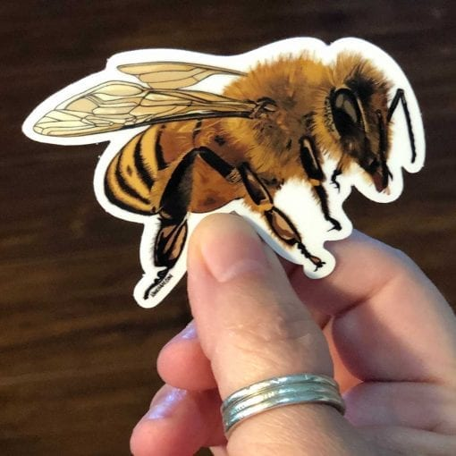 Honeybee Sticker