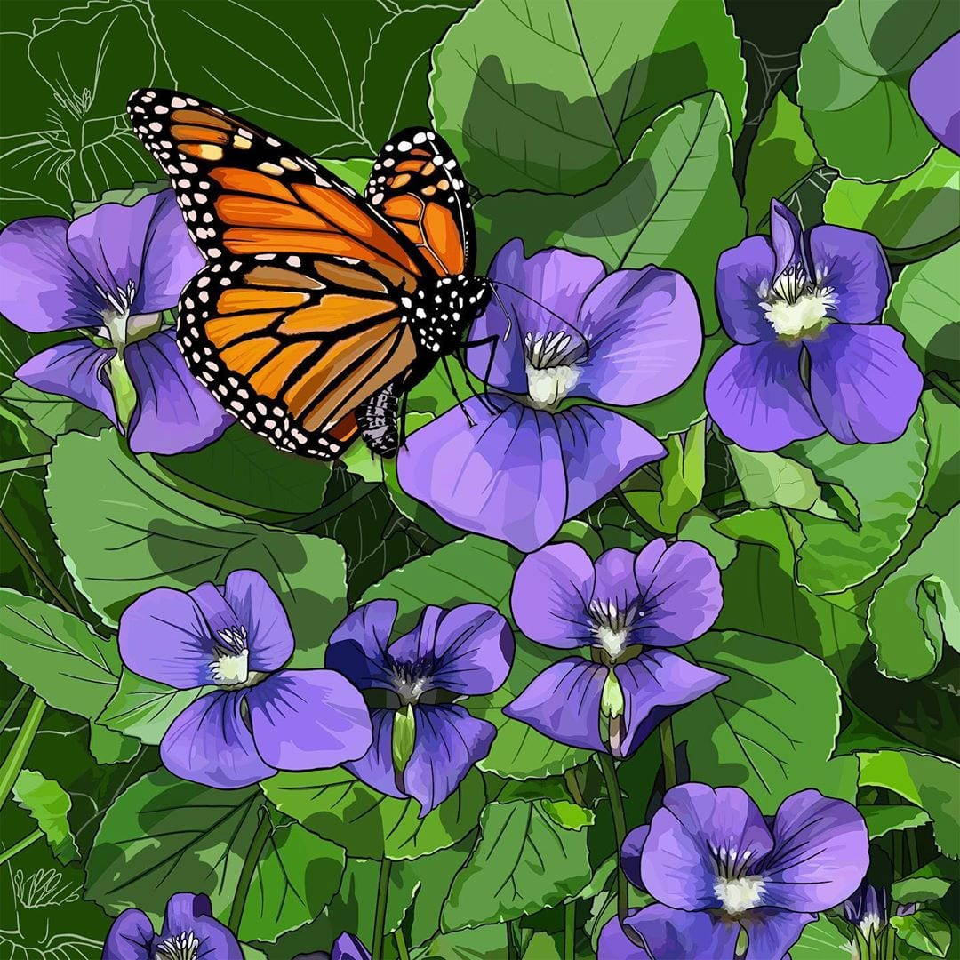 Violets and a monarch butterfly