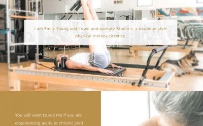 My latest website launch: Studio e