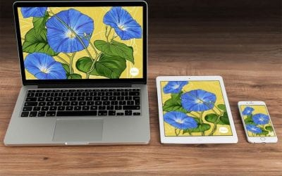 More flowers for your devices