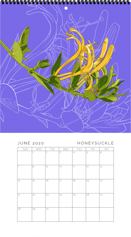 2020 Birth Month Flower Calendar - June