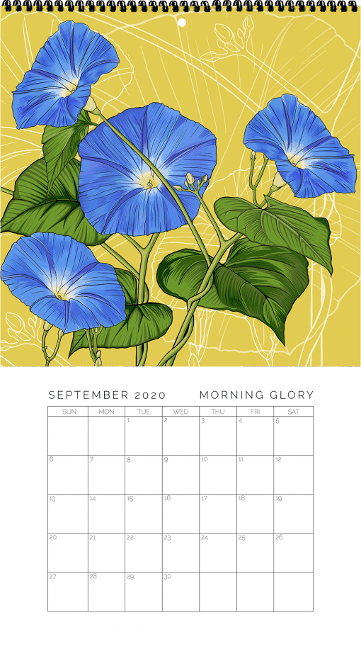 2020 Birth Month Flower Calendar - September
