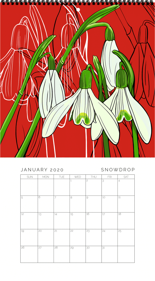 2020 Birth Month Flower Calendar - January