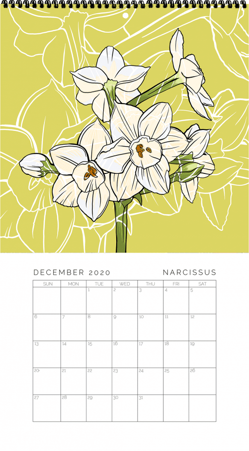 2020 Birth Month Flower Calendar - December
