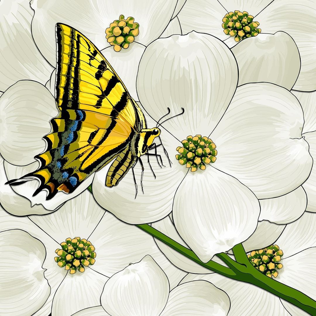Virginia's state flower is the dogwood and star insect is the tiger swallowtail butterfly.