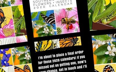 I'm about to make one last order of these 2020 State Flowers + Insects calendars! If you wanted one but didn't get one – or are seeing this for the first time – let me know and I can make it happen! $25 each.